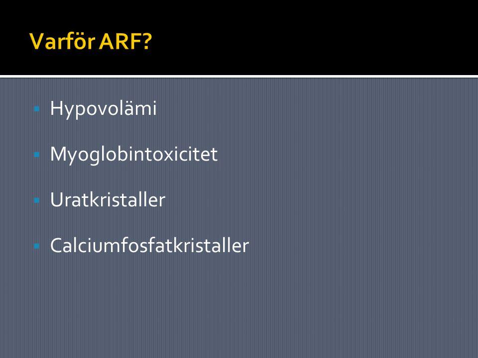 Varför ARF Hypovolämi Myoglobintoxicitet Uratkristaller