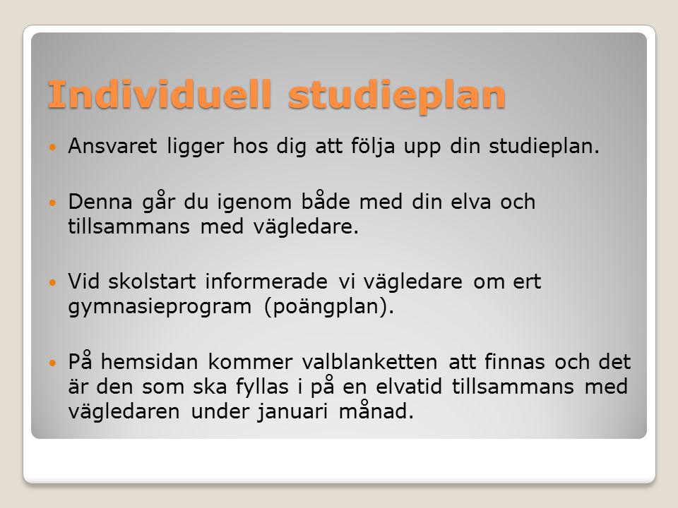 Individuell studieplan