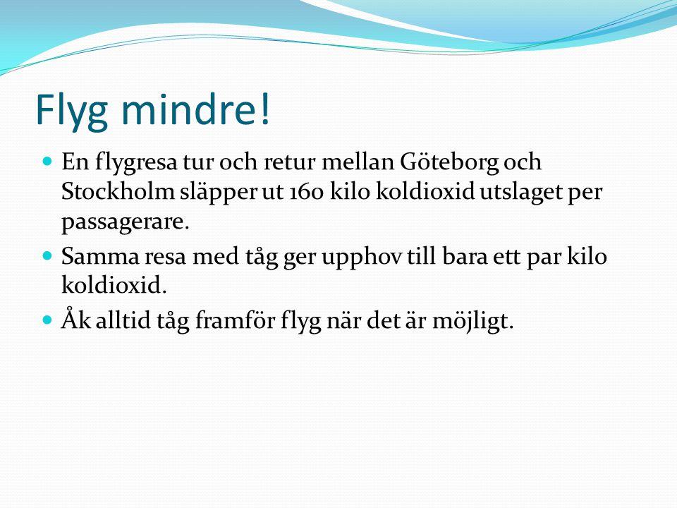 Flyg mindre! En flygresa tur och retur mellan Göteborg och Stockholm släpper ut 160 kilo koldioxid utslaget per passagerare.