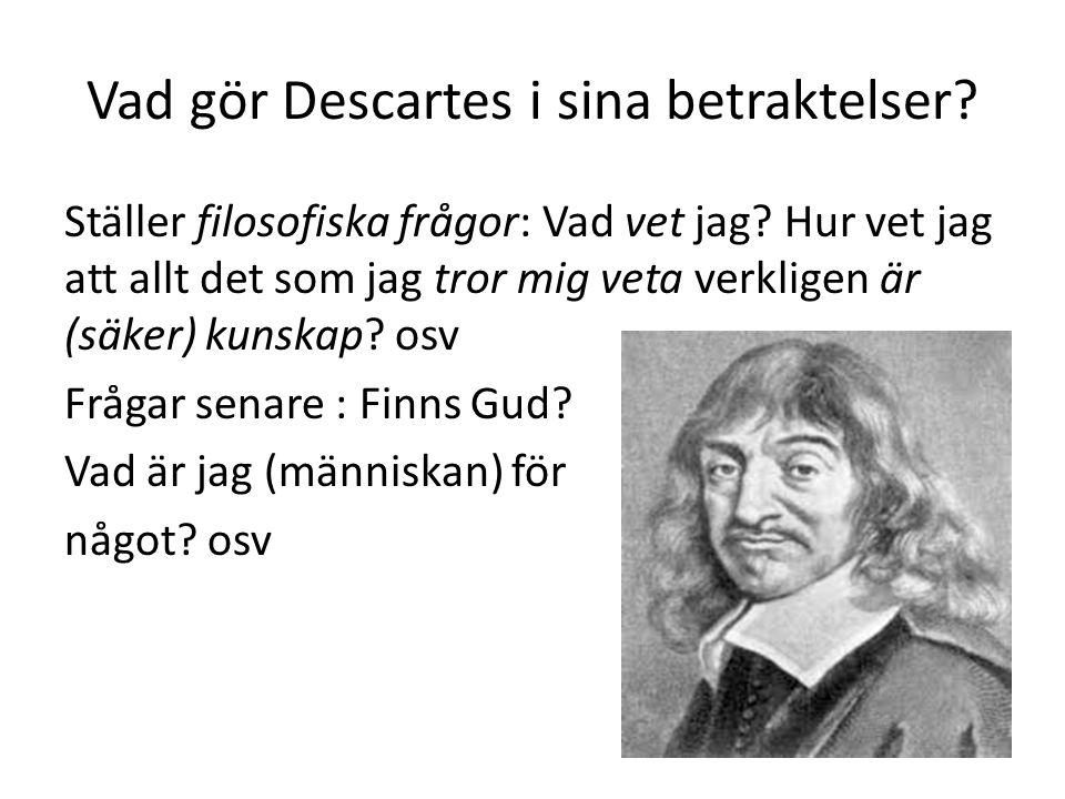 Vad gör Descartes i sina betraktelser