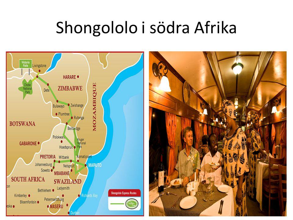 Shongololo i södra Afrika