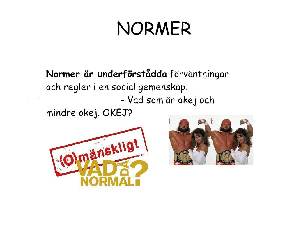 NORMER Normer är underförstådda förväntningar och regler i en social gemenskap.