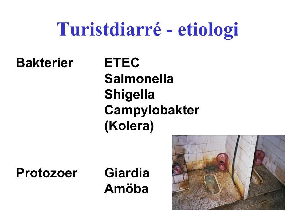 Turistdiarré - etiologi