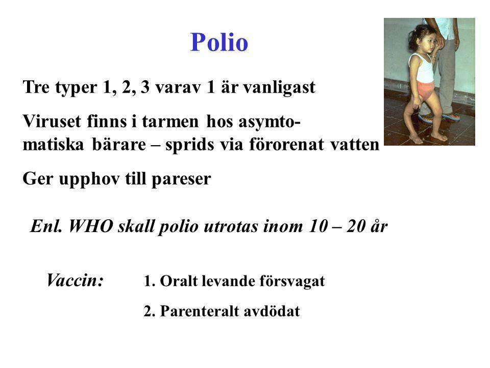 Polio Tre typer 1, 2, 3 varav 1 är vanligast