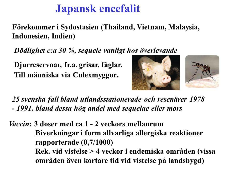 Japansk encefalit Förekommer i Sydostasien (Thailand, Vietnam, Malaysia, Indonesien, Indien) Dödlighet c:a 30 %, sequele vanligt hos överlevande.
