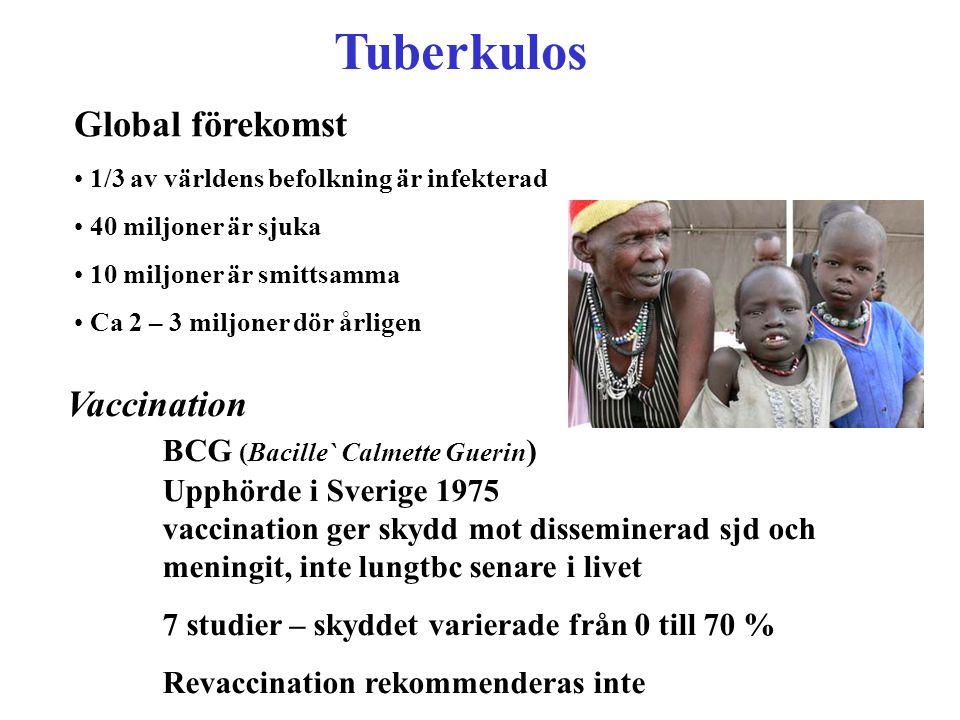 Tuberkulos Global förekomst
