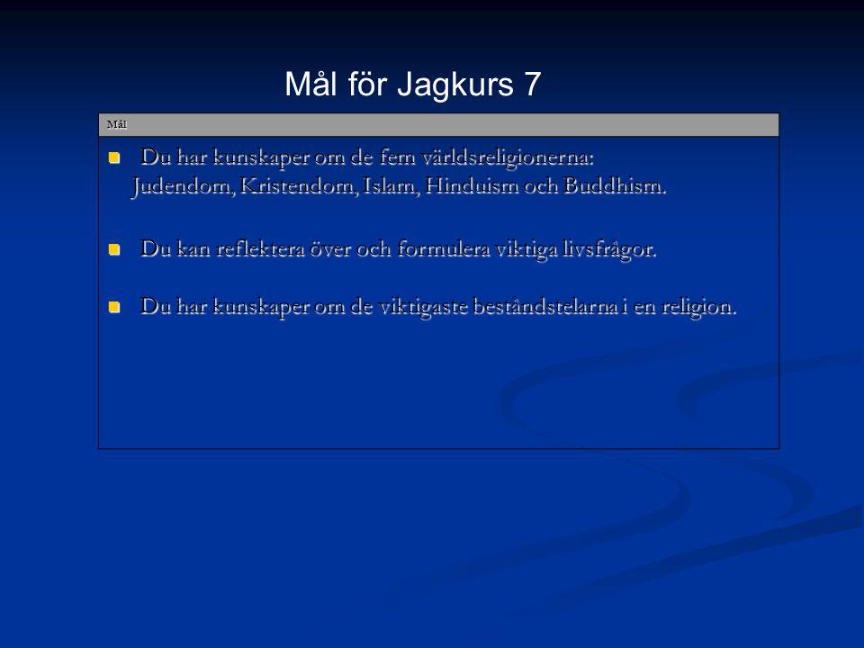 Mål för Jagkurs 7 Du har kunskaper om de fem världsreligionerna:
