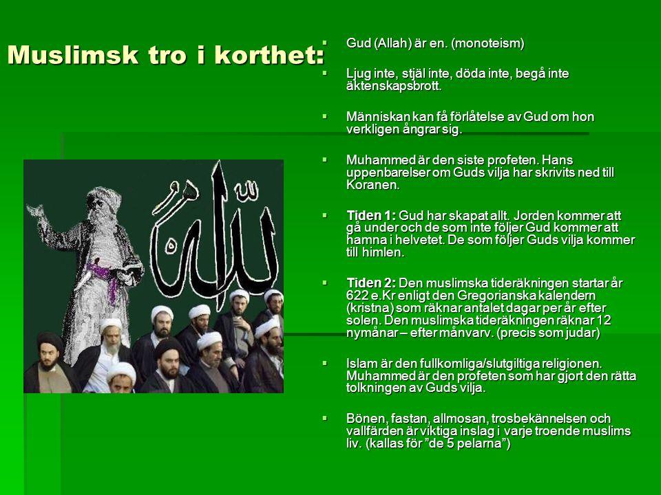 Muslimsk tro i korthet: