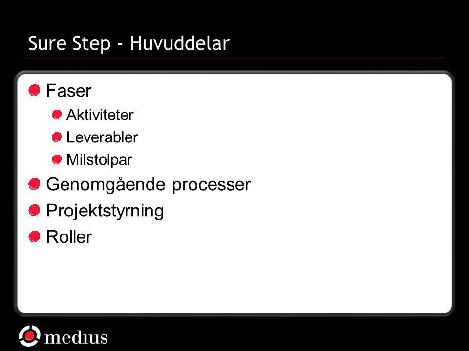 Sure Step - Huvuddelar Faser Genomgående processer Projektstyrning