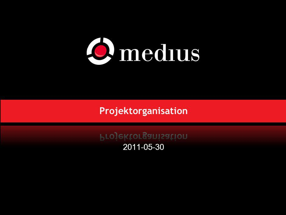 Projektorganisation 2011-05-30