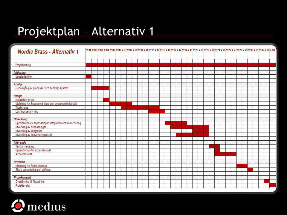 Projektplan – Alternativ 1