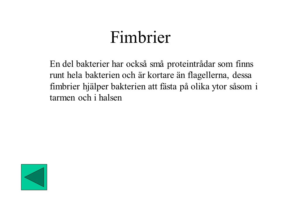 Fimbrier