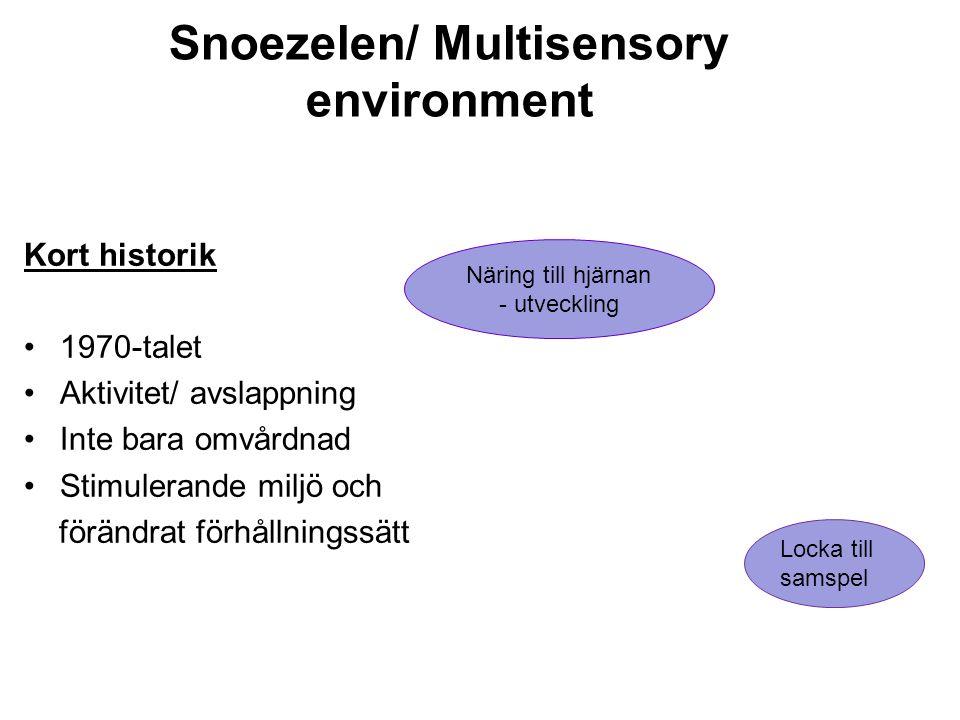 Snoezelen/ Multisensory environment
