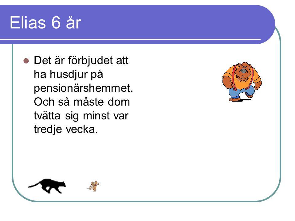 Elias 6 år Det är förbjudet att ha husdjur på pensionärshemmet.