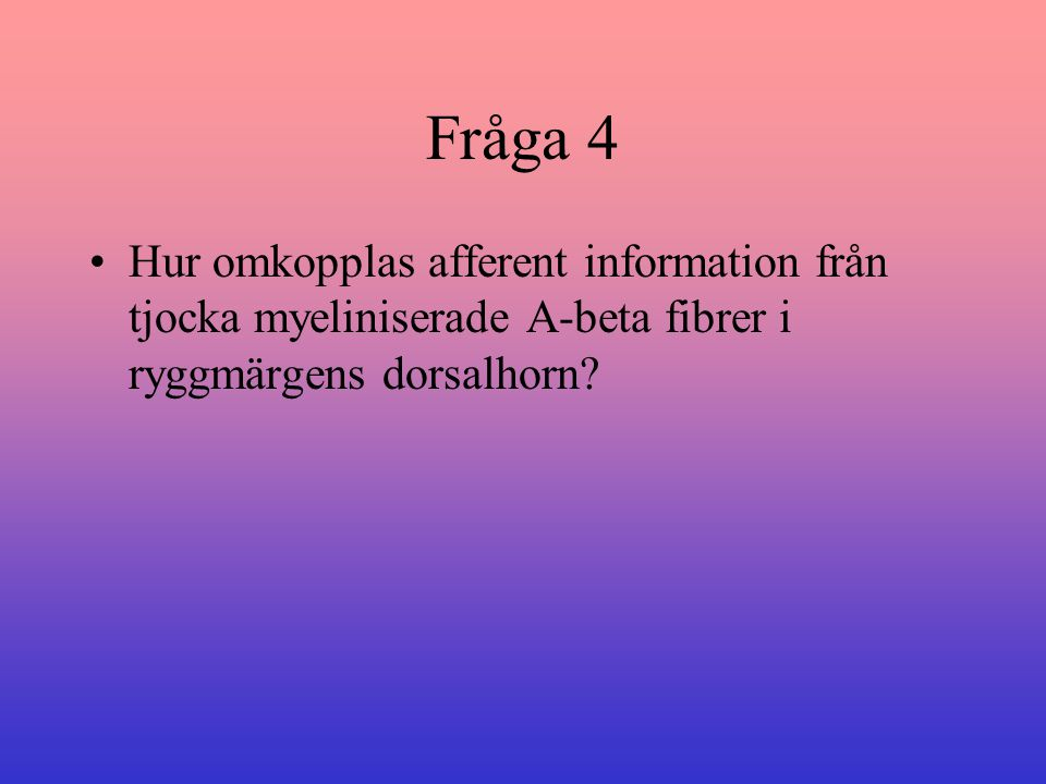 Fråga 4 Hur omkopplas afferent information från tjocka myeliniserade A-beta fibrer i ryggmärgens dorsalhorn