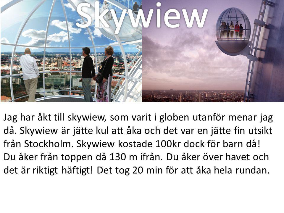 Skywiew