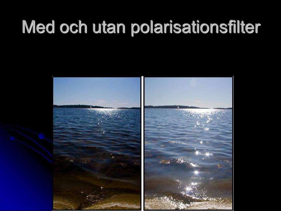 Med och utan polarisationsfilter