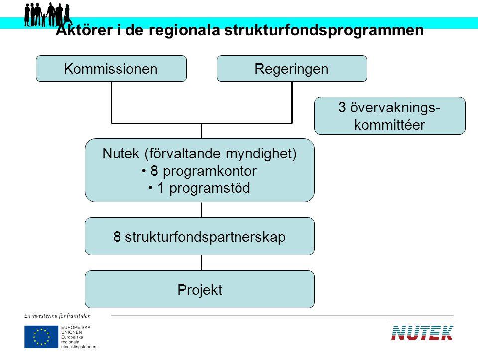 Aktörer i de regionala strukturfondsprogrammen