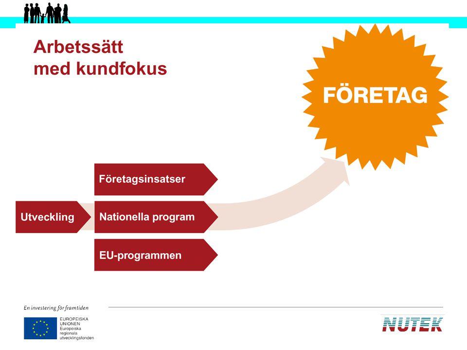 Utifrån denna bild kan man tala om Nuteks organisation: varför vi processorienterar oss, hur det är upplagt etc.