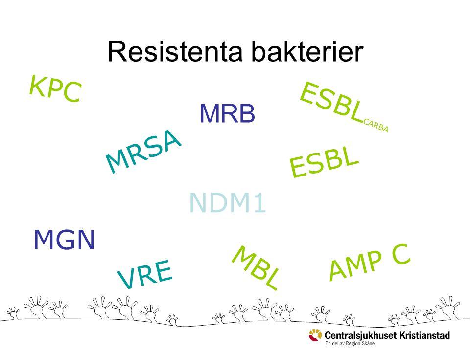 Resistenta bakterier KPC ESBLCARBA MRSA ESBL NDM1 MGN AMP C MBL VRE