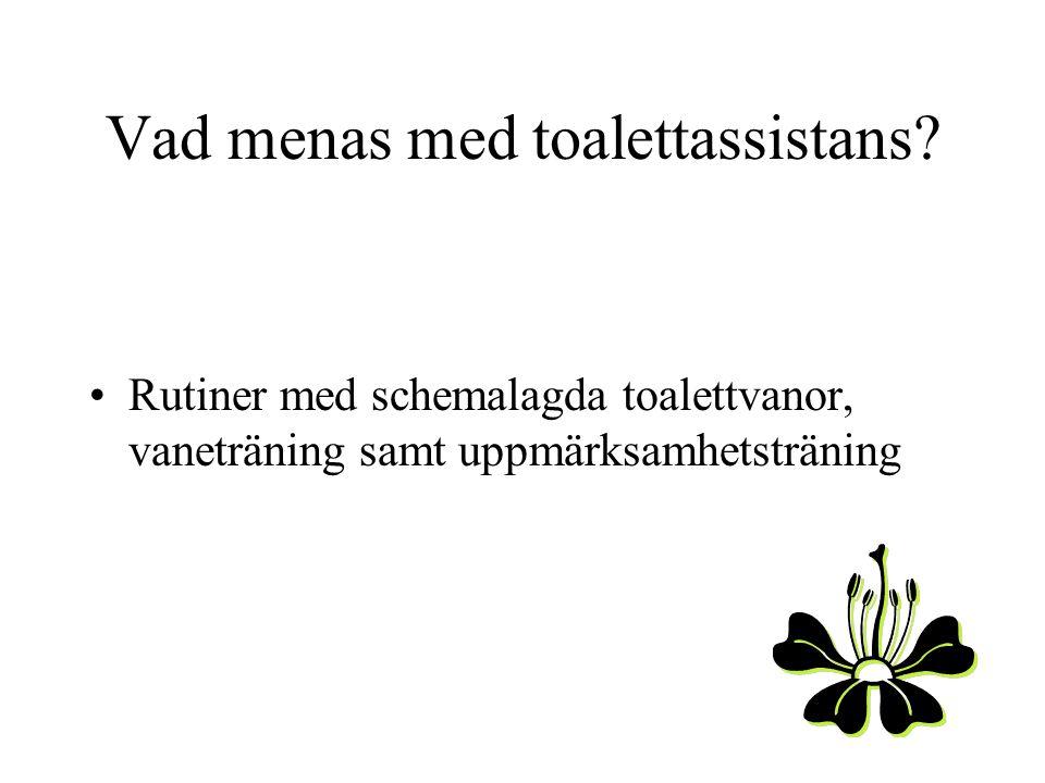 Vad menas med toalettassistans