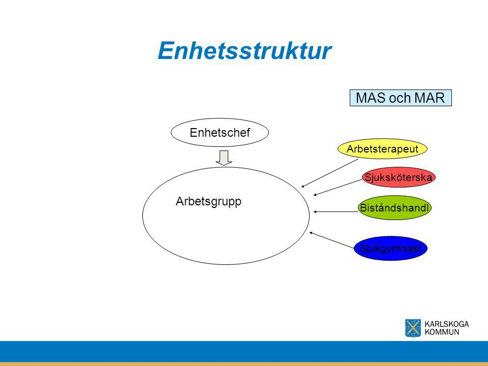 Enhetsstruktur MAS och MAR Enhetschef Arbetsgrupp Arbetsterapeut