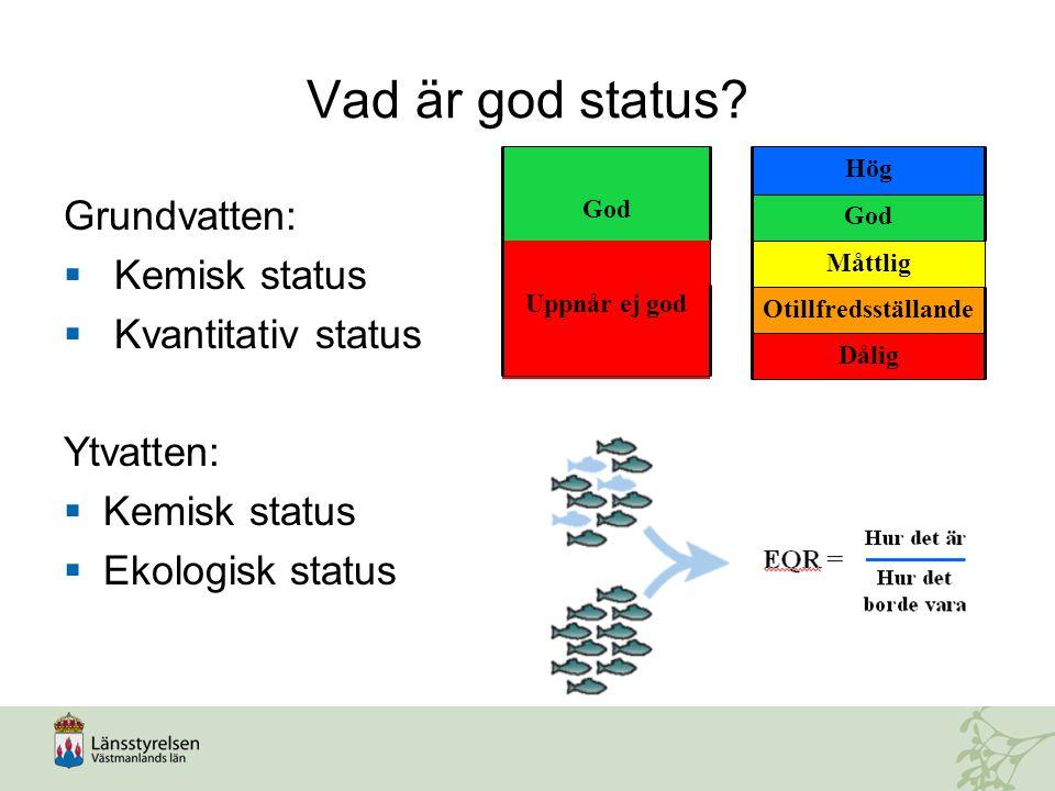 Vad är god status Grundvatten: Kemisk status Kvantitativ status