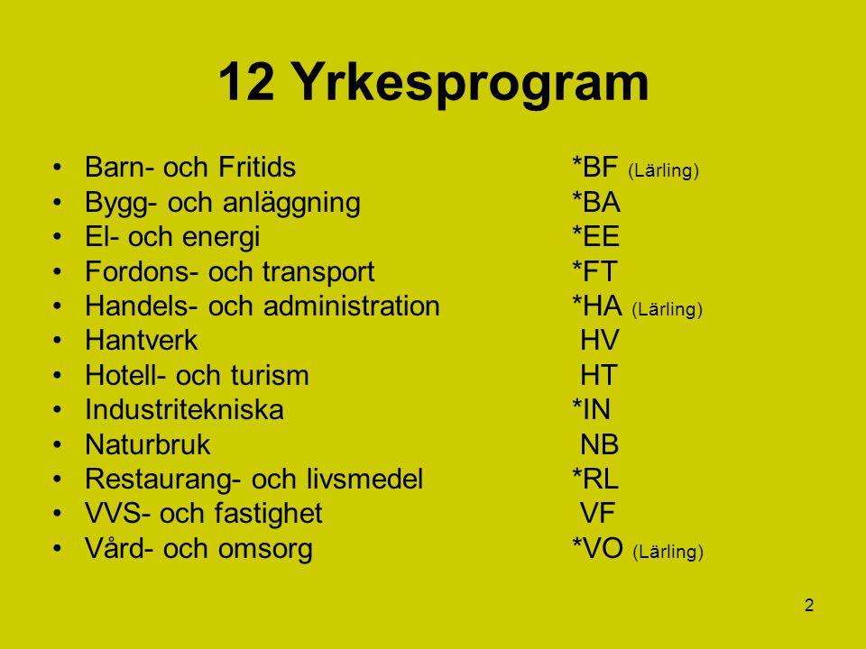 12 Yrkesprogram Barn- och Fritids *BF (Lärling)