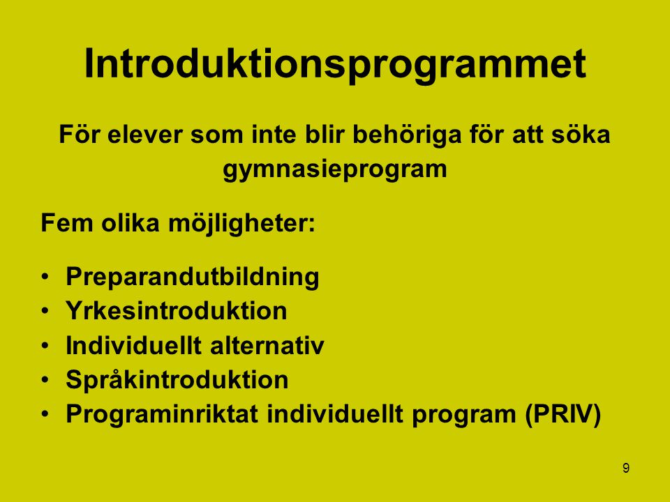 Introduktionsprogrammet
