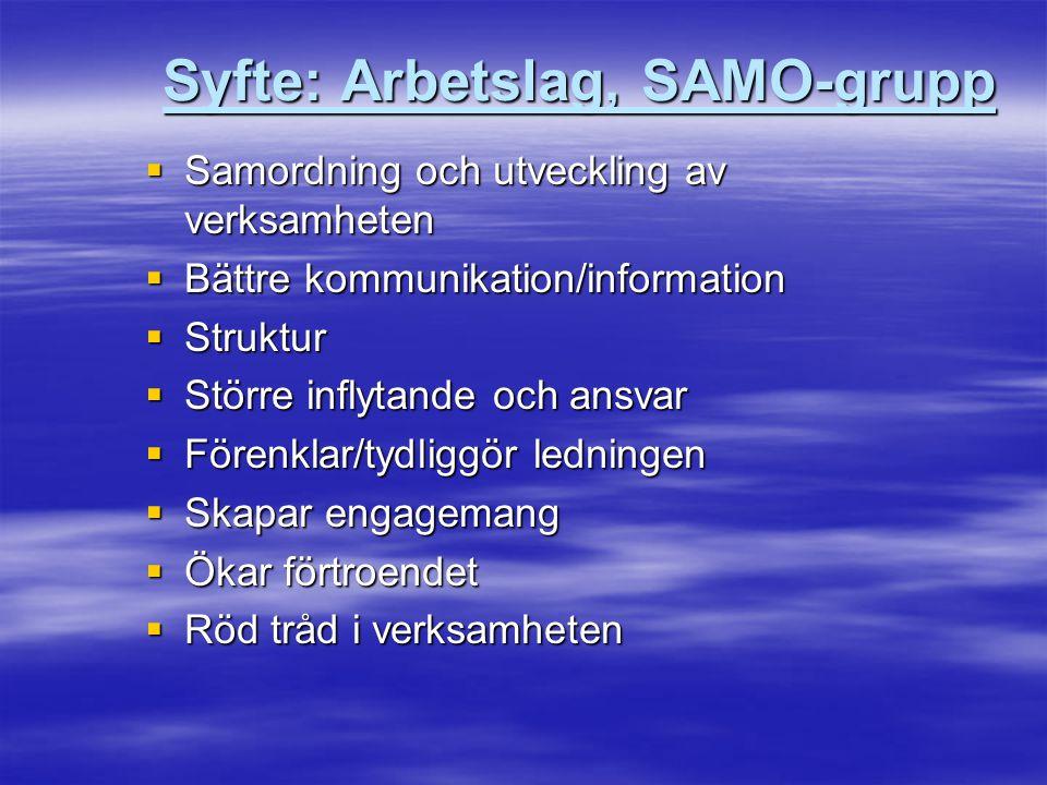 Syfte: Arbetslag, SAMO-grupp