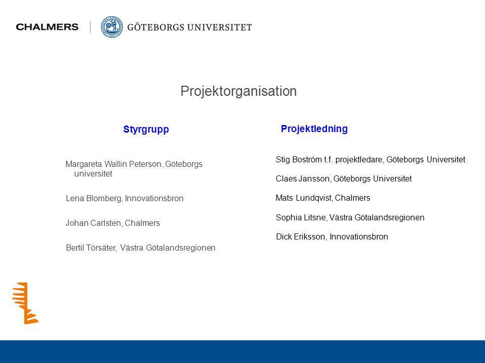 Projektorganisation Styrgrupp Projektledning