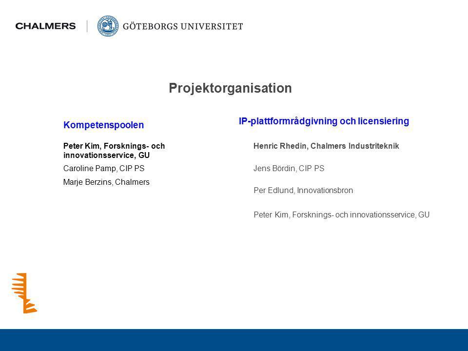Projektorganisation IP-plattformrådgivning och licensiering