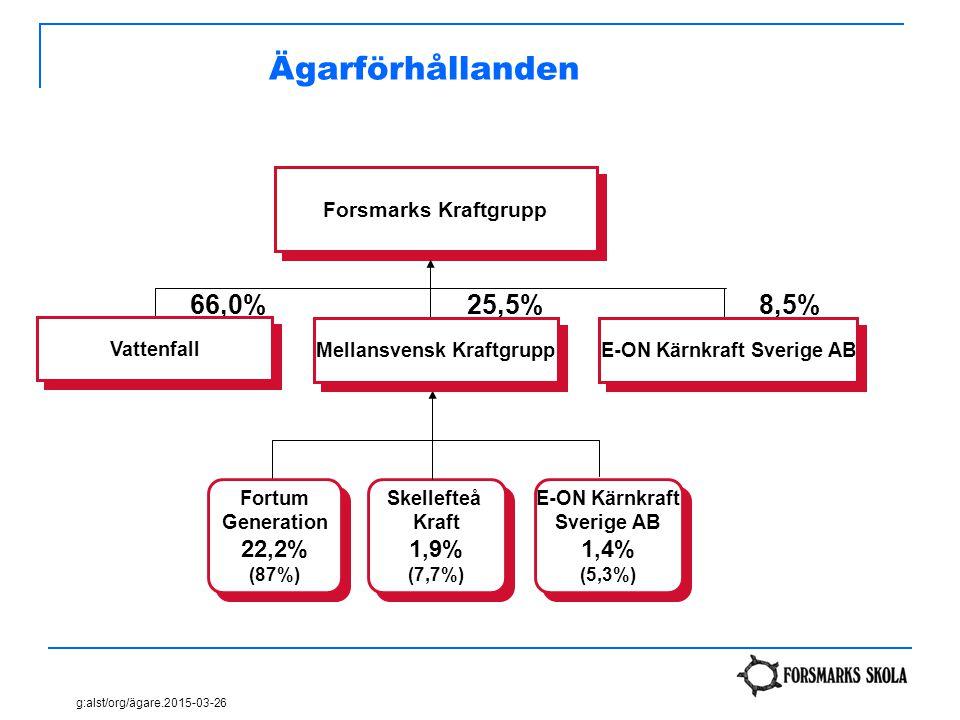 Mellansvensk Kraftgrupp E-ON Kärnkraft Sverige AB