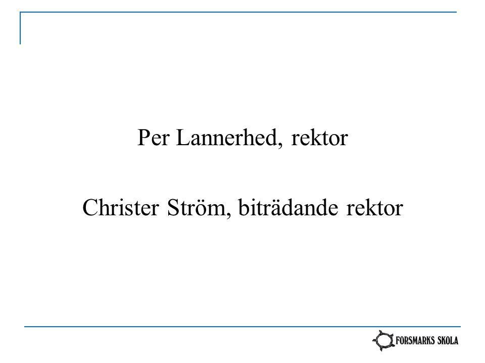Christer Ström, biträdande rektor