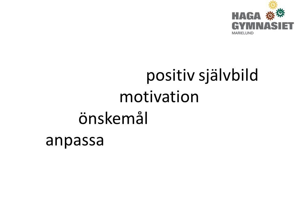 positiv självbild motivation önskemål anpassa