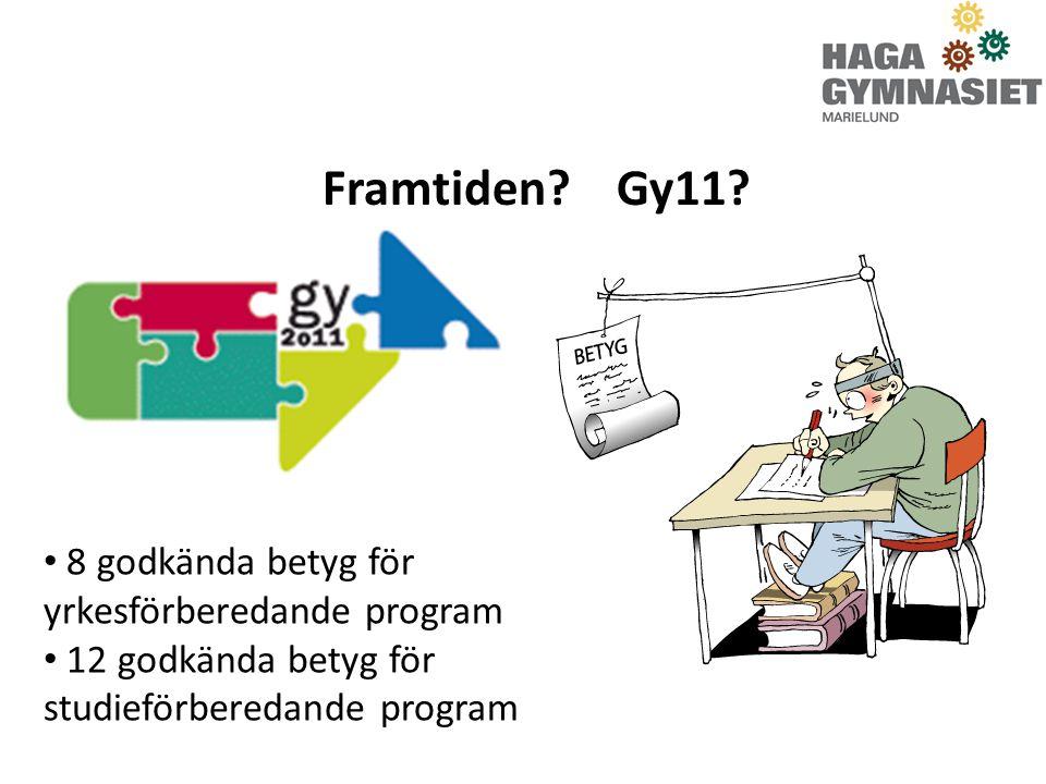 Framtiden Gy11 8 godkända betyg för yrkesförberedande program