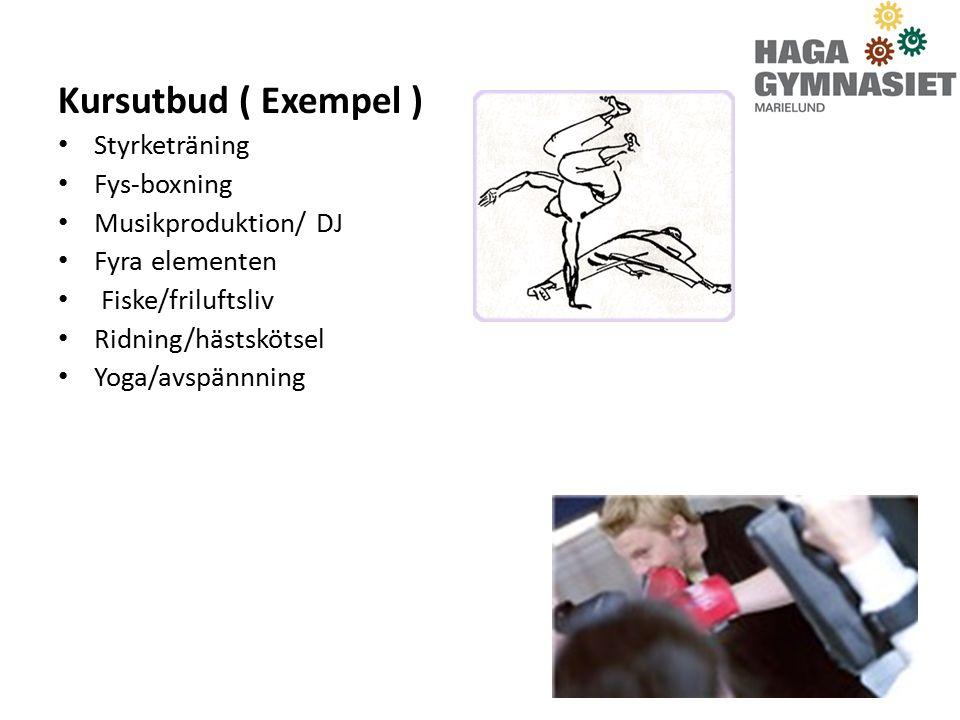 Kursutbud ( Exempel ) Styrketräning Fys-boxning Musikproduktion/ DJ