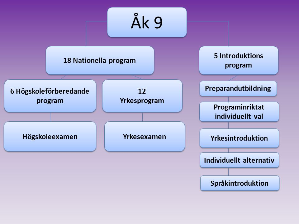 Åk 9 18 Nationella program 5 Introduktions program