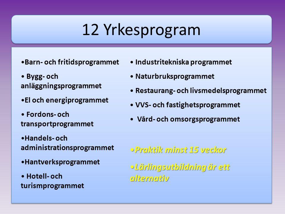 12 Yrkesprogram Praktik minst 15 veckor