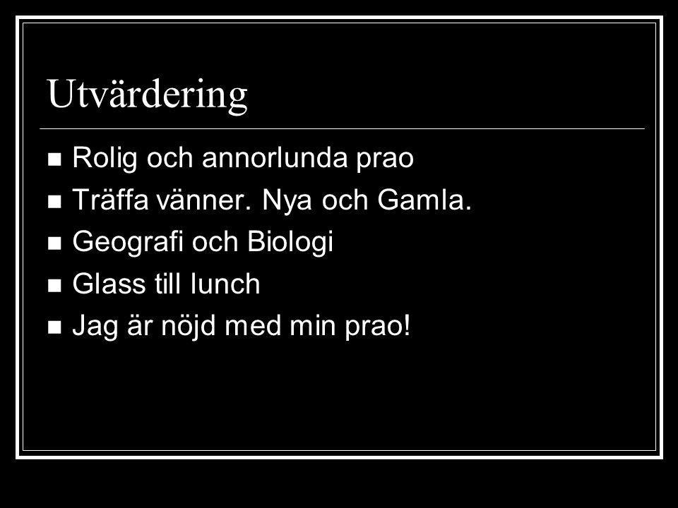 Utvärdering Rolig och annorlunda prao Träffa vänner. Nya och Gamla.