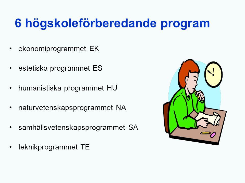 6 högskoleförberedande program
