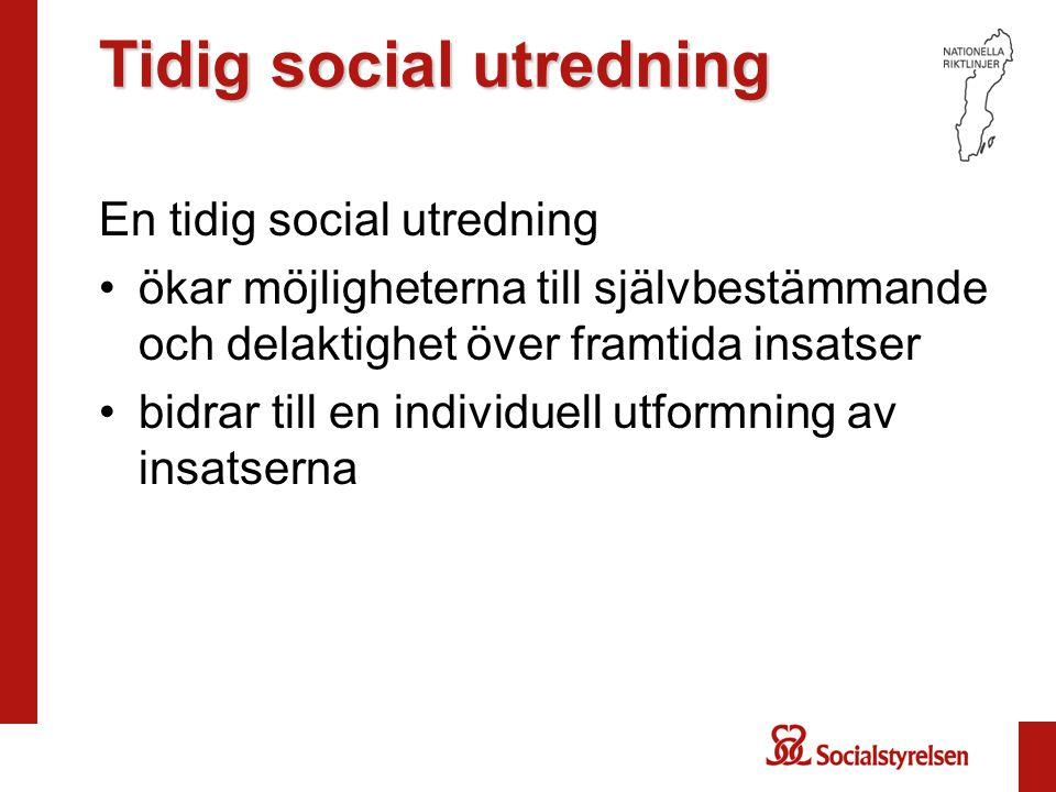 Tidig social utredning