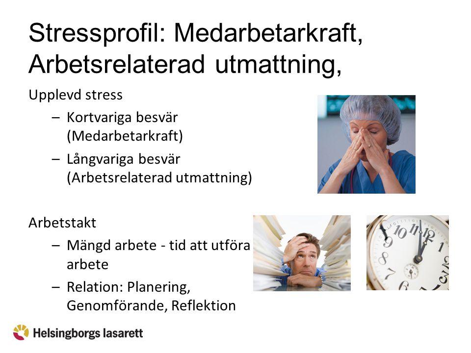 Stressprofil: Medarbetarkraft, Arbetsrelaterad utmattning, Arbetstakt