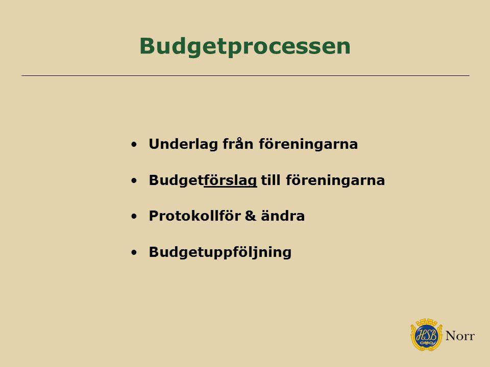 Budgetprocessen Underlag från föreningarna