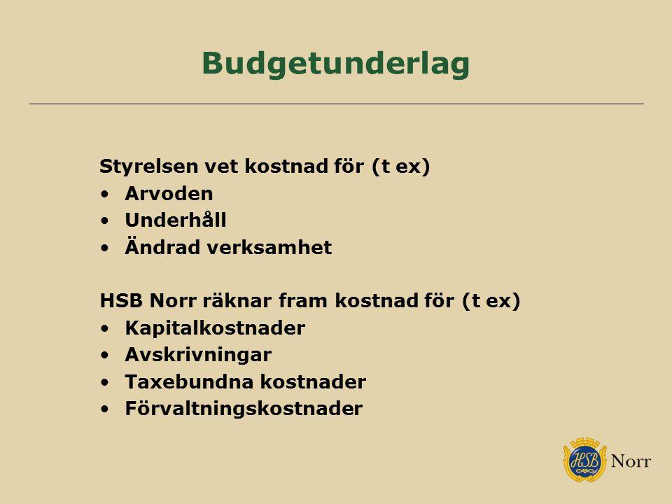 Budgetunderlag Styrelsen vet kostnad för (t ex) Arvoden Underhåll