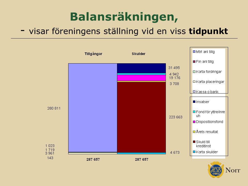Balansräkningen, - visar föreningens ställning vid en viss tidpunkt