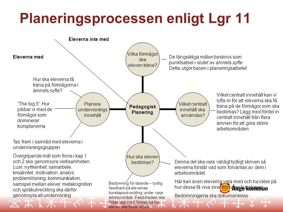 Planeringsprocessen enligt Lgr 11
