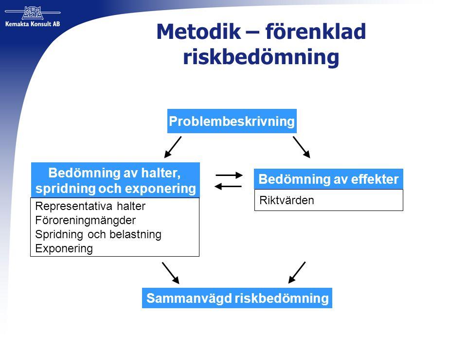 Metodik – förenklad riskbedömning