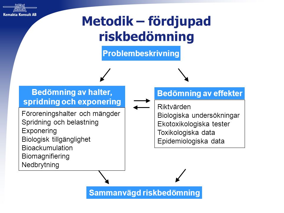 Metodik – fördjupad riskbedömning