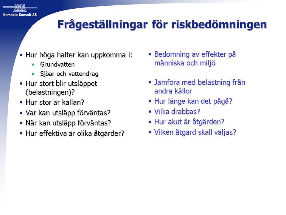 Frågeställningar för riskbedömningen